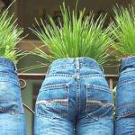 Чем можно отстирать траву с джинсов?
