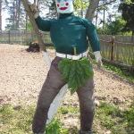 Садово-огородные работы в мае