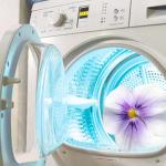 Запах в стиральной машине: как избавиться?