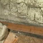 Обработка стен от грибка и плесени