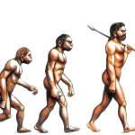 Как и когда произошли люди?