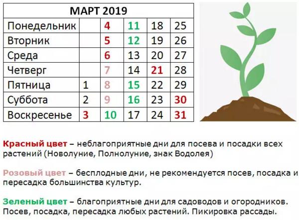 2019-03-13_105033