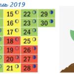 Календарь посадочных дней на апрель 2019 года