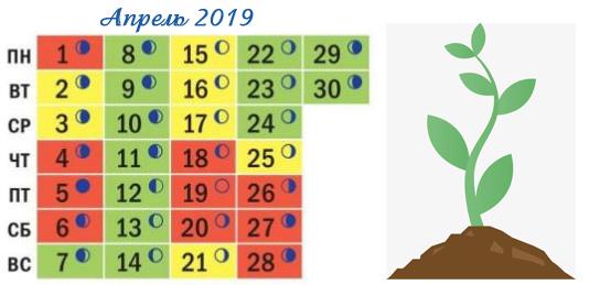 Календарь посадок на апрель 2019